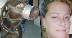 Animal Cruelty Convicted Woman Duct Tape Dog Mouth
