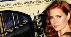 //amy adams sony hack today pp