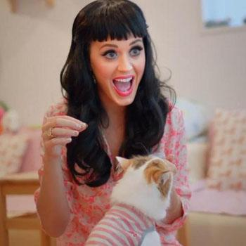 //katy perry part of me
