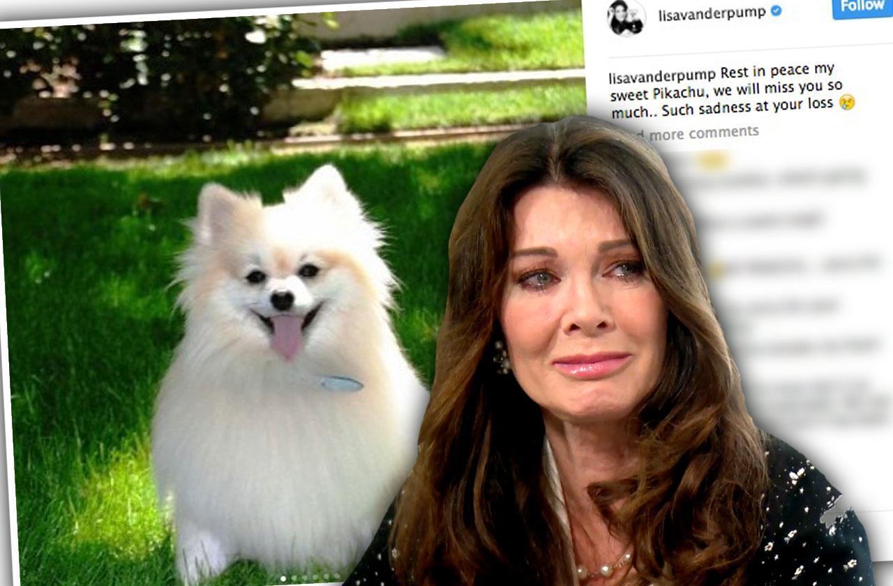 //Lisa Vanderpump Dog Pikachu Dies pp