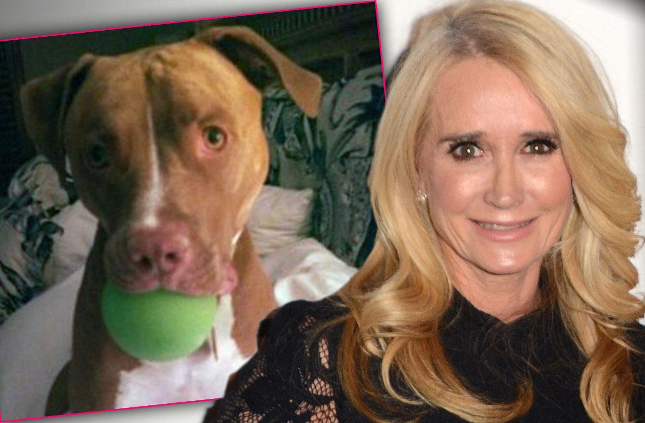 Kim Richards Dog Bite Victim Never Paid