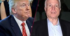 //john mccain russian dossier details trump pp