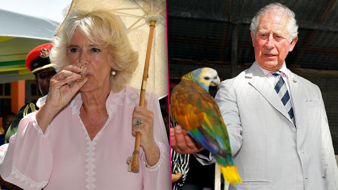 Prince Charles and Camilla Duchess of Cornwall Let Loose in the Caribbean
