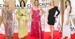 See All The Stars Y'all! Country Music Awards 2019 Red Carpet Celebrity Arrivals
