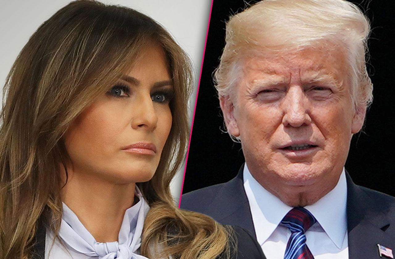 Melania Trump Seething Access Hollywood Scandal Interview