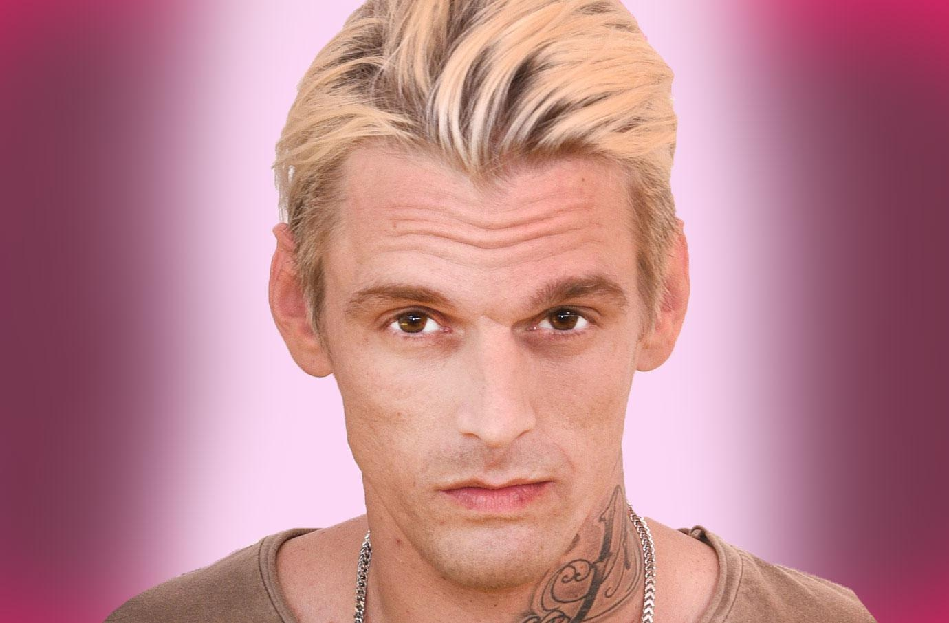 //aaron carter arrested for alleged dui and drug possession pp