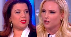 Meghan McCain Screamed Ana Navarro Fight View
