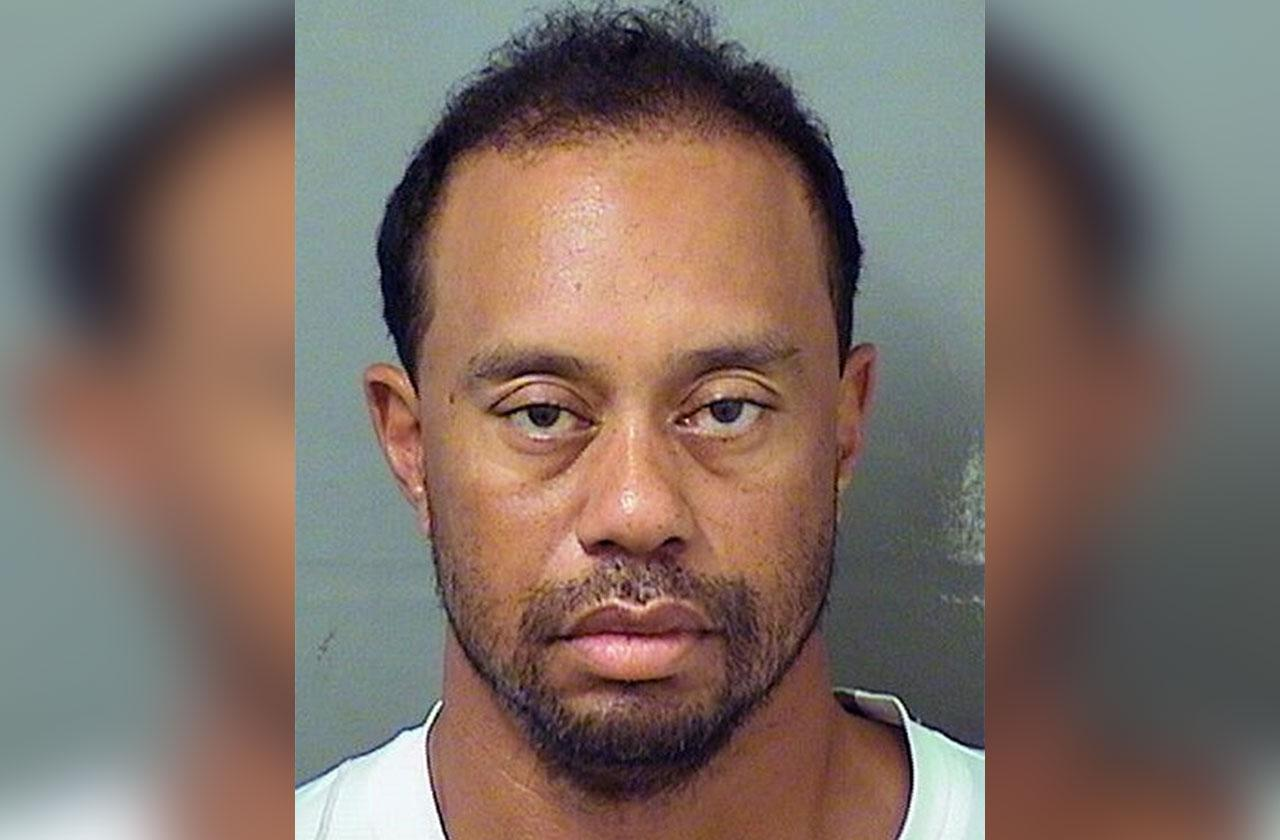Tiger Woods DUI Told Cops He Took Xanax Vicodin