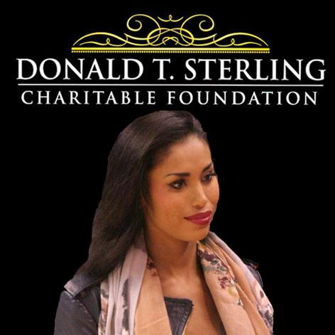 //v stiviano donald t sterling charity square