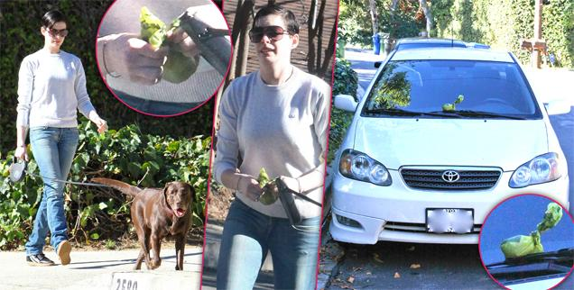 //anne hathaway drops doggy poop on paparazzos car wide
