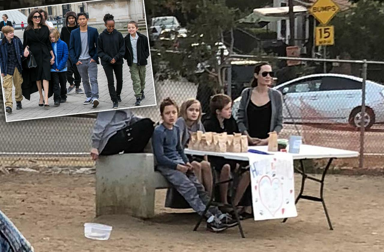Angelina Jolie And Kids Sell Treats At Dog Park