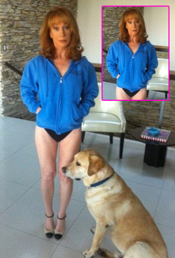 //kathy griffin panties twitter