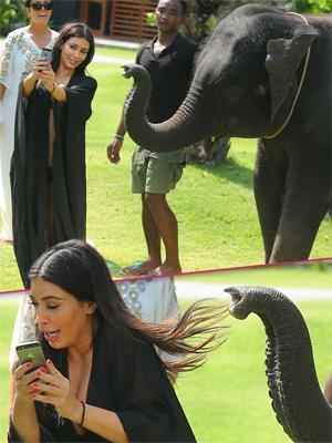 //kim kardashian scared elephants thailand family holiday tall