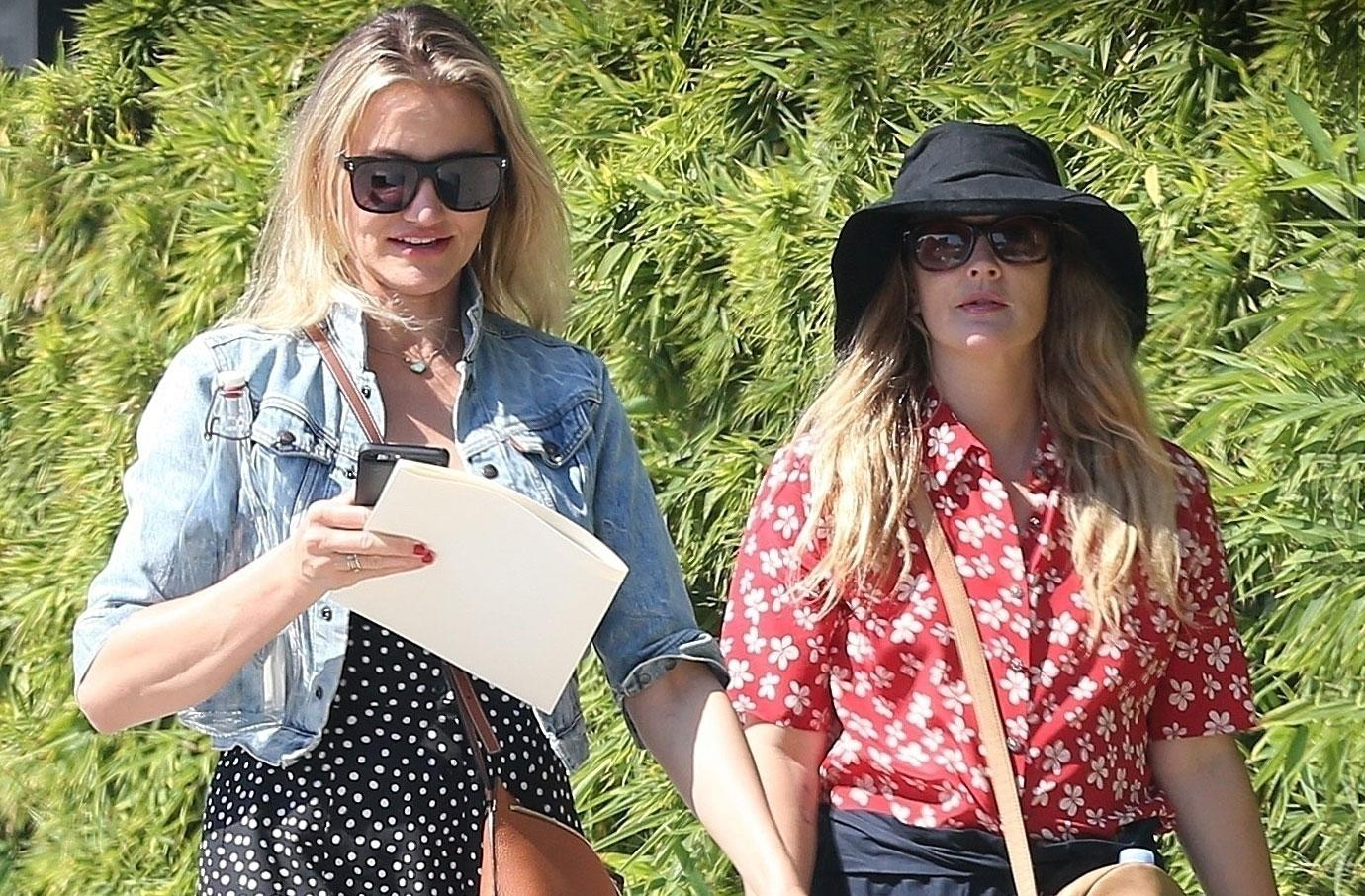 Cameron Diaz and Drew Barrymore Get Together