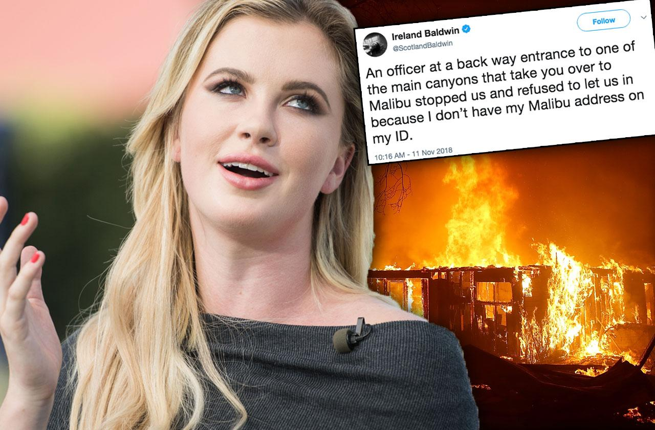 Ireland Baldwin Accused Looting Malibu Fire