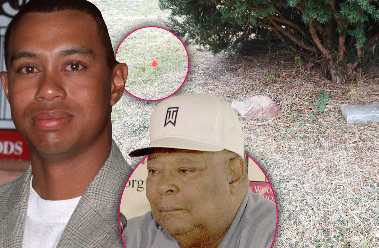 //Tiger Woods Dad Earl Grave Photos pp