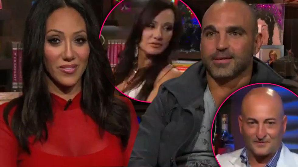 //melissa and joe gorga rino and teresa wwhl