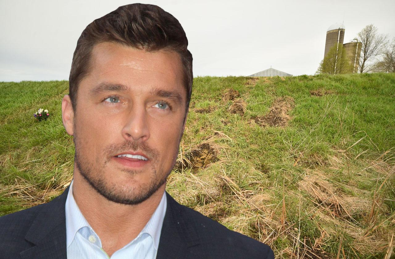 chris soules fatal hit and run trial delayed