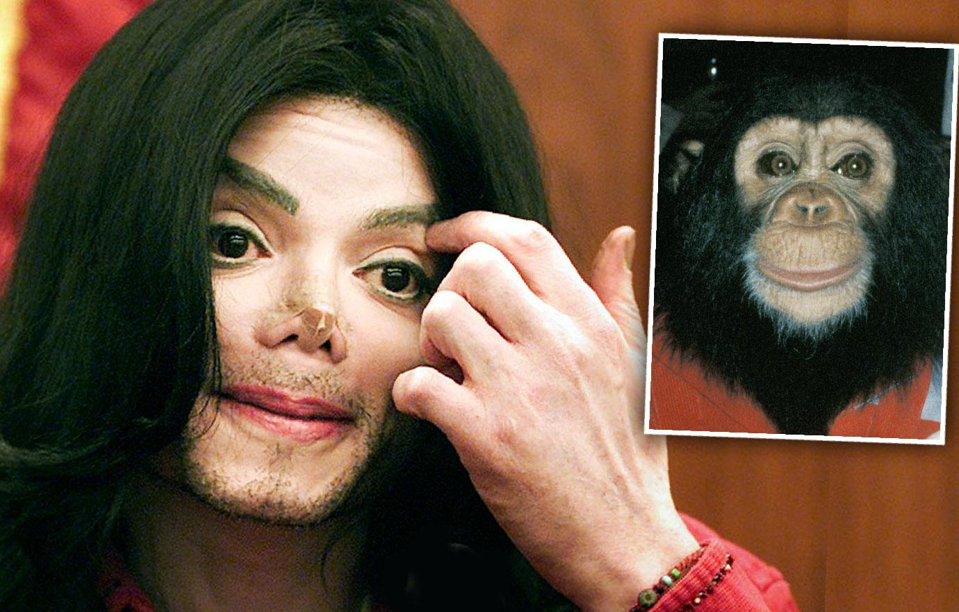 Michael Jackson's Chimp Bubbles Tried To Kill Himself Abused
