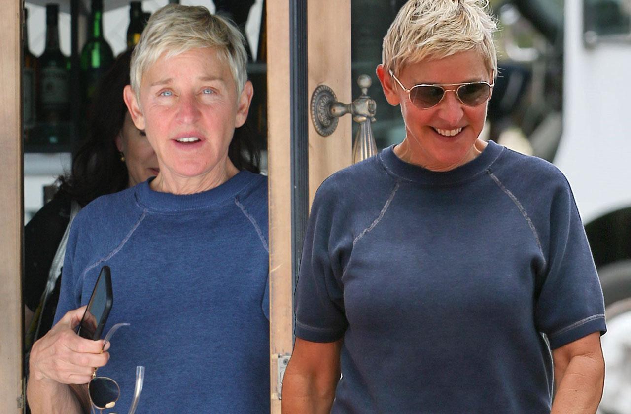 Ellen DeGeneres Divorce Portia De Rossi Lunch Alone