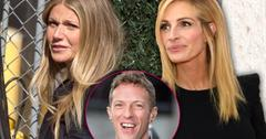//gwyneth paltrow ditched by julia roberts attends chris martin dakota johnson party pp