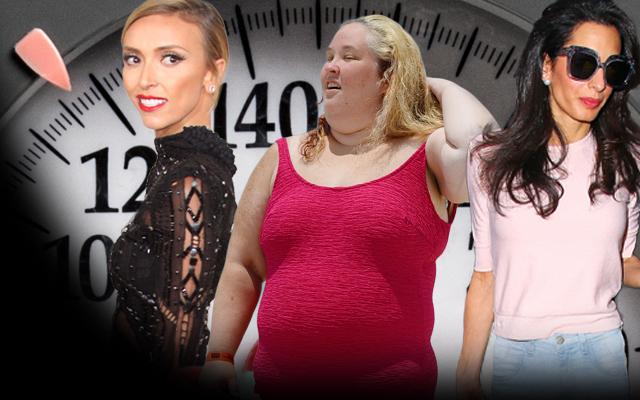 celebrity weight fat thin photos