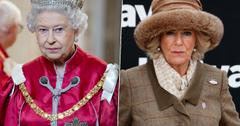 Queen Called Camilla Wicked Woman