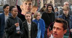 brad pitt mother jane not seen grandkids since angelina jolie divorce