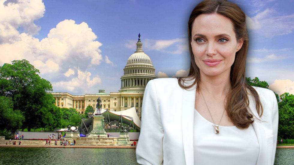 //angelina jolie career in politics