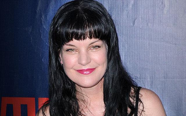 Pauley Perrette 'NCIS' Attacked
