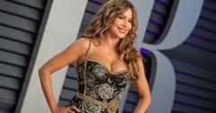 Sofia Vergara wore a strapless grey sparkly and lace gown to the 2019 Vanity Fair Oscar party.