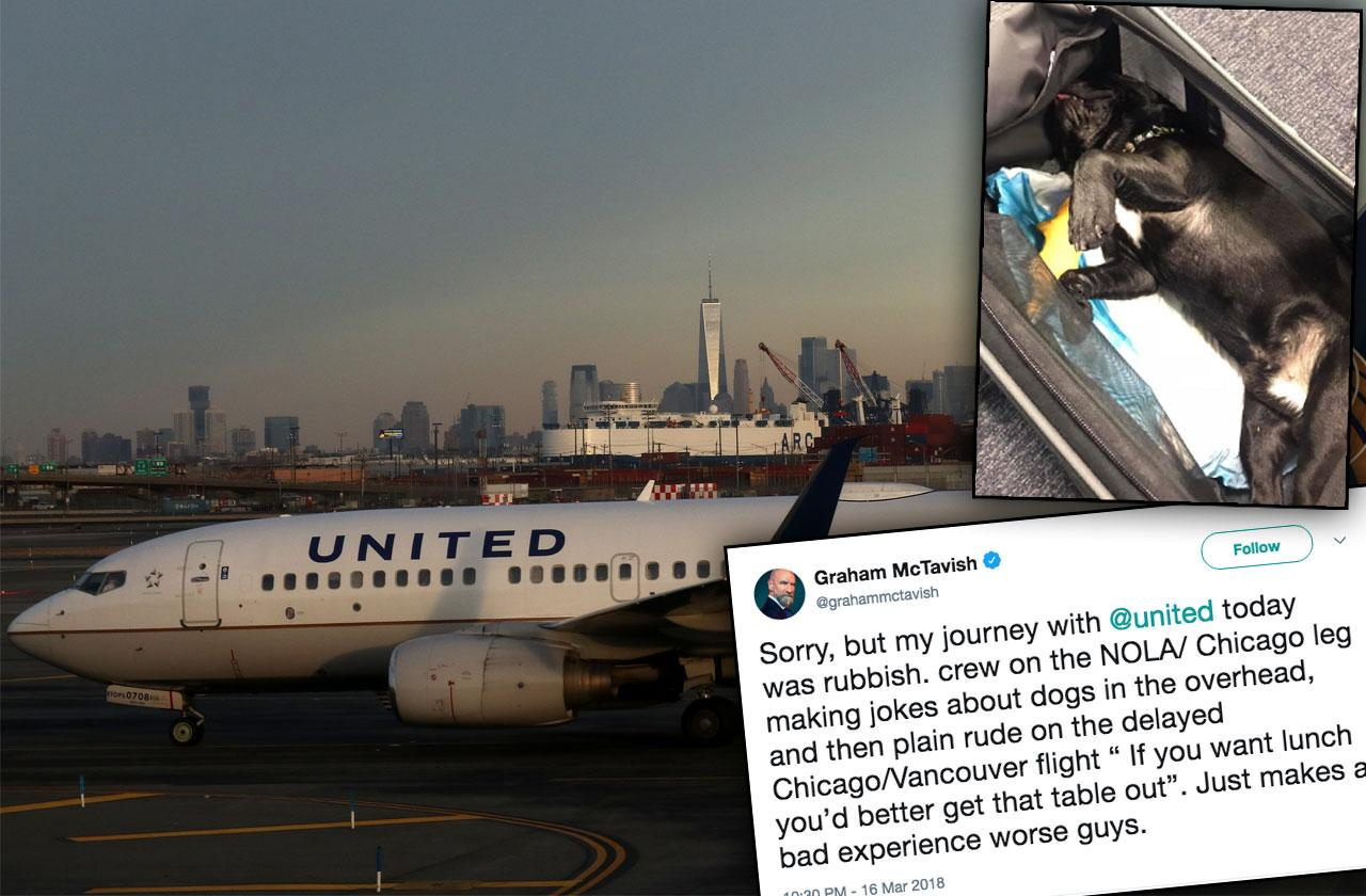 United Airlines Jokes Puppy Death