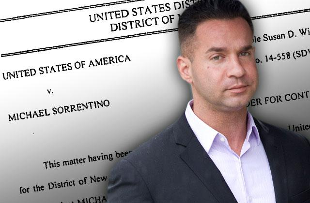 //jersey shore mike the situation sorrentino tax fraud trial