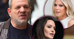 Harvey Weinstein Sexually Harassed Angelina Jolie Gwyneth Paltrow