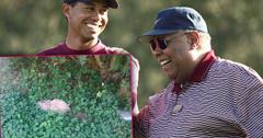 //Tiger Woods Dad Grave Abandoned Overgrown Weeds pp