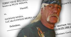 Gawker Hulk Hogan Sex Tape Lawsuit