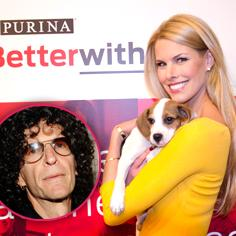 //beth stern doesnt care about haters saves rescue pets