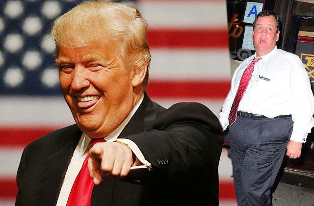 //donald trump tells chris ch