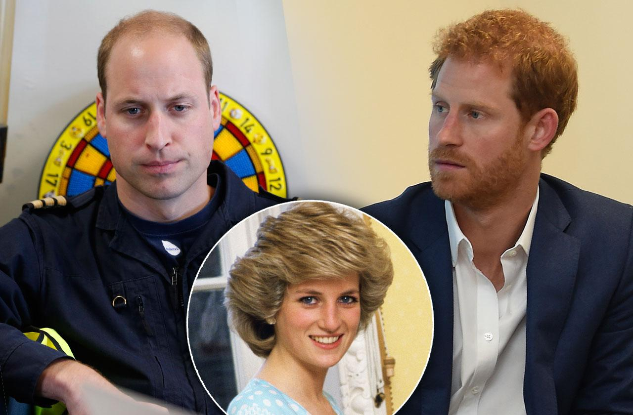 William Harry Princess Diana Documentary