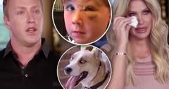 Kim Zolciak And Husband Face Dog Who Harmed Son Don't Be Tardy
