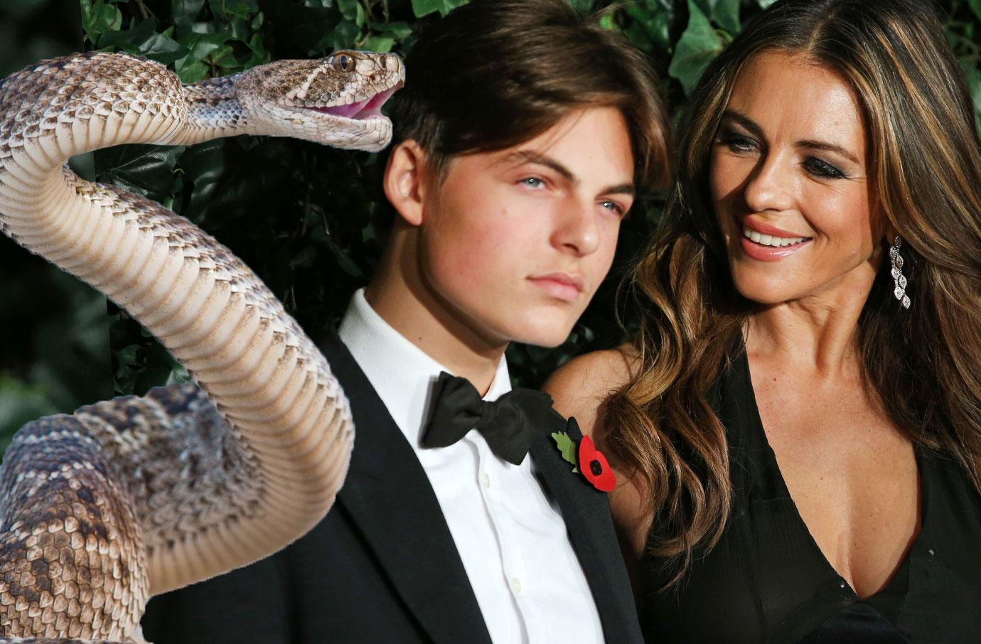Liz Hurley Saved Son Damian's Life In Horror Snake Attack