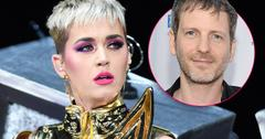 Katy Perry Claims Dr. Luke Did Not Rape Her