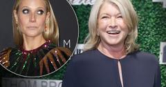 Martha Stewart Gwyneth Paltrow Fight