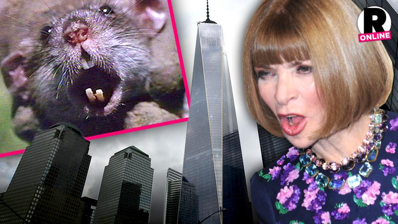 //anna wintour rats freedom tower new vogue office pp sl