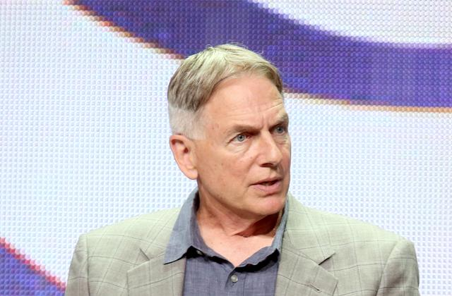 mark harmon custody battle