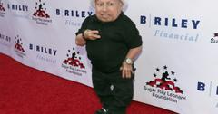 //verne troyer autopsy ordered pp