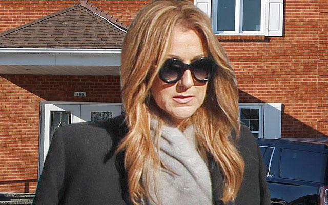 Celine Dion Arrives At Chapel For Brother Daniel Dion's Funeral With Mother & Sister
