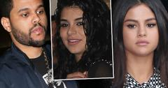 Selena Gomez Weeknd Dating Pre Grammy Party Lookalike Pics