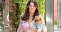 Lisa Vanderpump Decides If She Will Attend 'RHOBH' Reunion