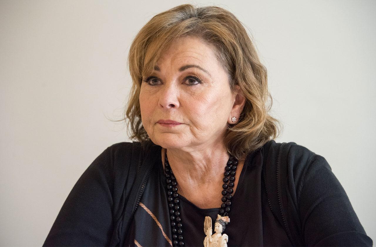Roseanne Barr Insults Valerie Jarrett Interview Racist